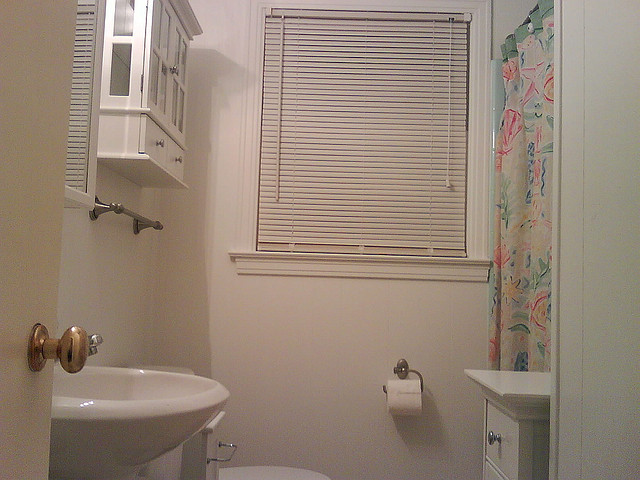 Dress up Your Bathroom with Bathroom Blinds Ideas